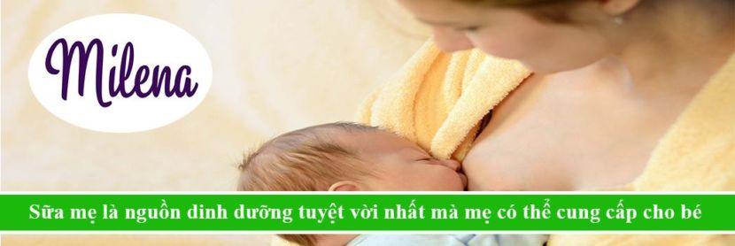 Tình Yêu Sữa Mẹ